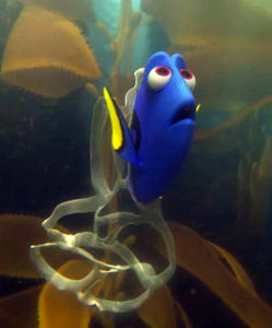 FindingDory_6-PackRing