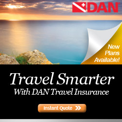 DAN travel Network