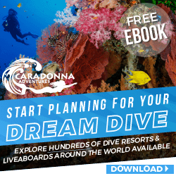 Caradonna Dive Adventures